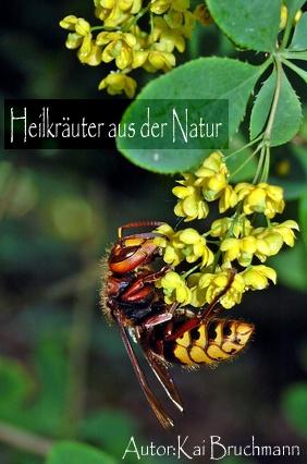 Heilkräuter aus der Natur als eBook Download vo...