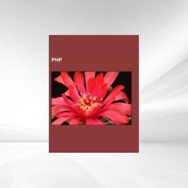PHP als Taschenbuch von