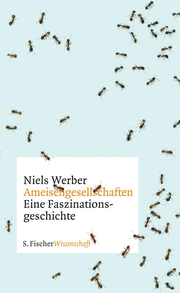 Ameisengesellschaften als Buch von Niels Werber
