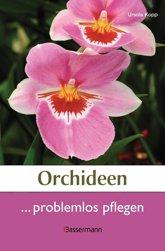 Orchideen problemlos pflegen als eBook Download...