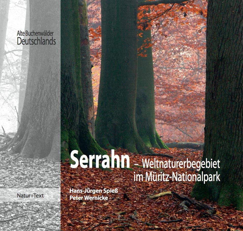 Serrahn- Weltnaturerbe im Müritz-Nationalpark a...