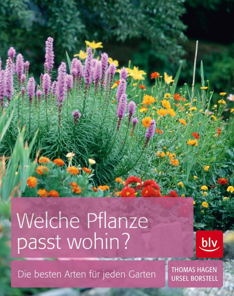 Welche Pflanze passt wohin? als eBook Download ...