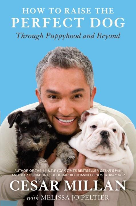 How to Raise the Perfect Dog als eBook Download...