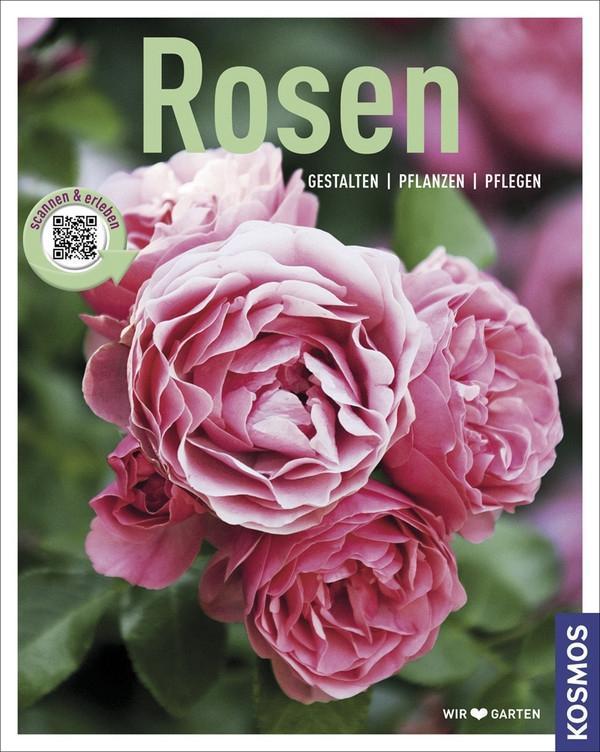 Rosen als Buch von Gabriele Richter, Thomas Proll