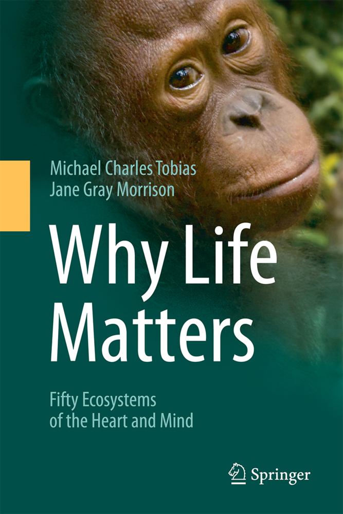 Why Life Matters als Buch von Michael Charles T...