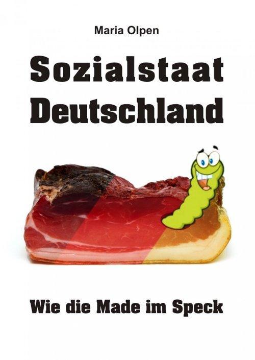 Sozialstaat Deutschland als eBook Download von ...