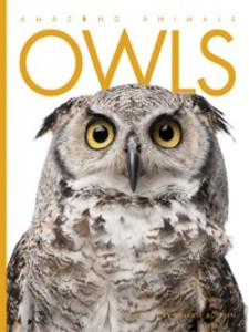 Owls als eBook Download von Valerie Bodden