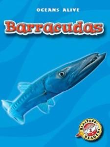 Barracudas als eBook Download von Colleen Sexton