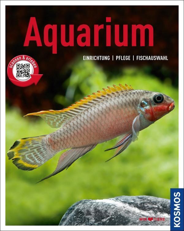 Aquarium als Buch von Angela Beck