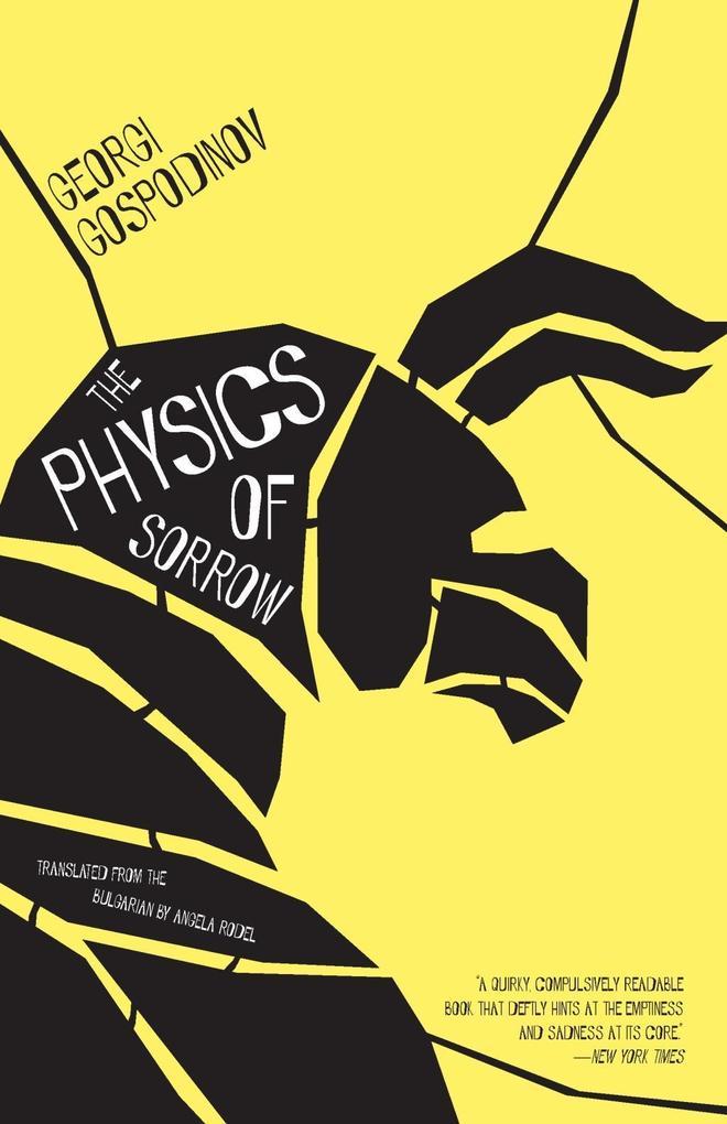 The Physics of Sorrow als eBook Download von Ge...