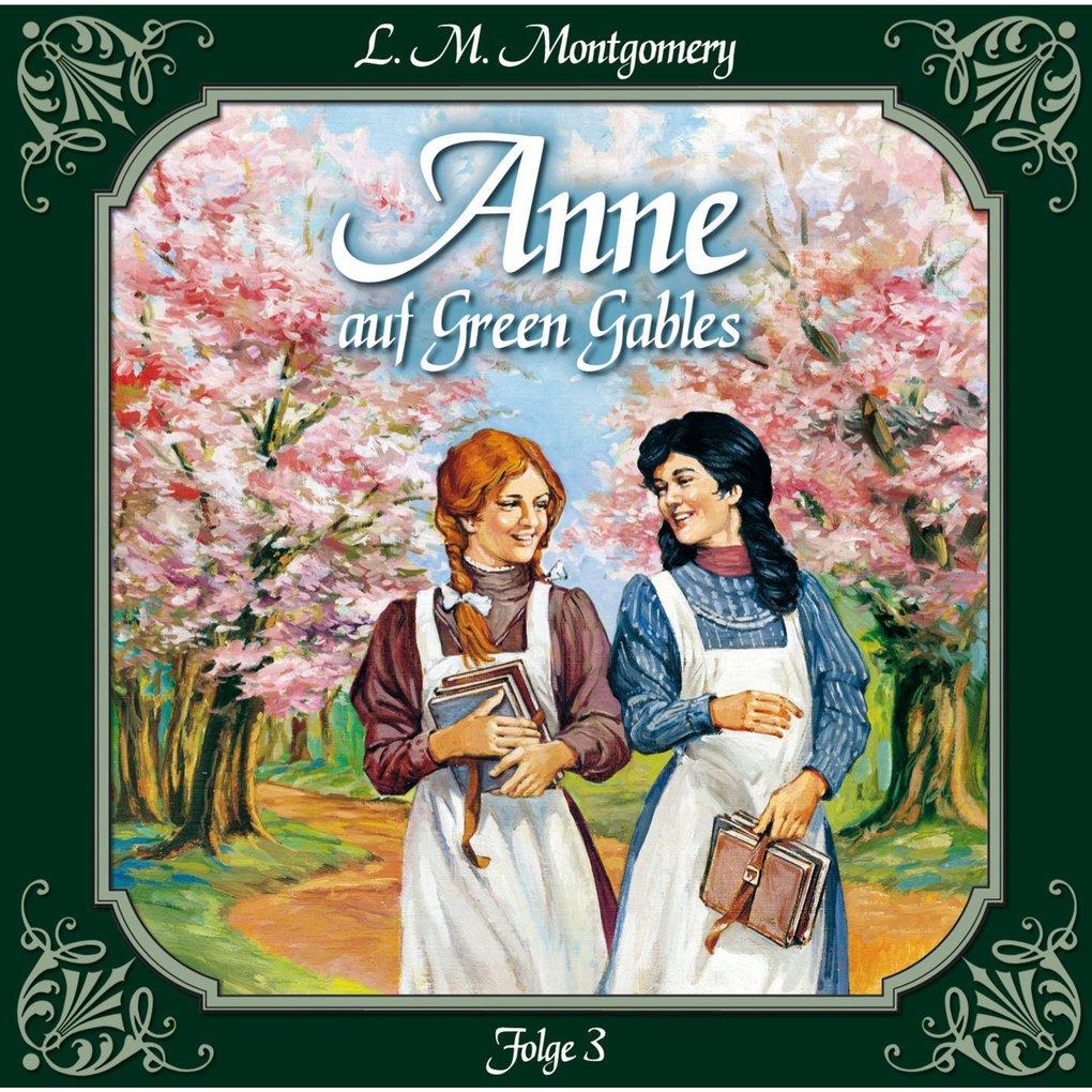 Anne auf Green Gables, Folge 3: Jede Menge Miss...