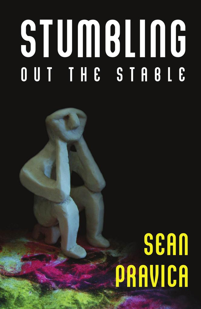 Stumbling Out the Stable als eBook Download von...