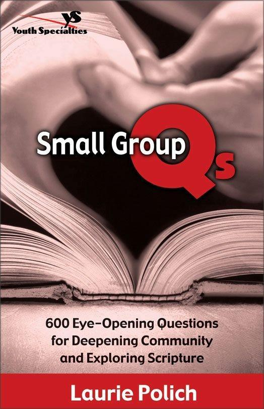 Small Group Qs als eBook Download von Laurie Po...