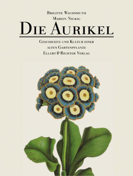 Die Aurikel als Buch von Marion Nickig, Brigitt...