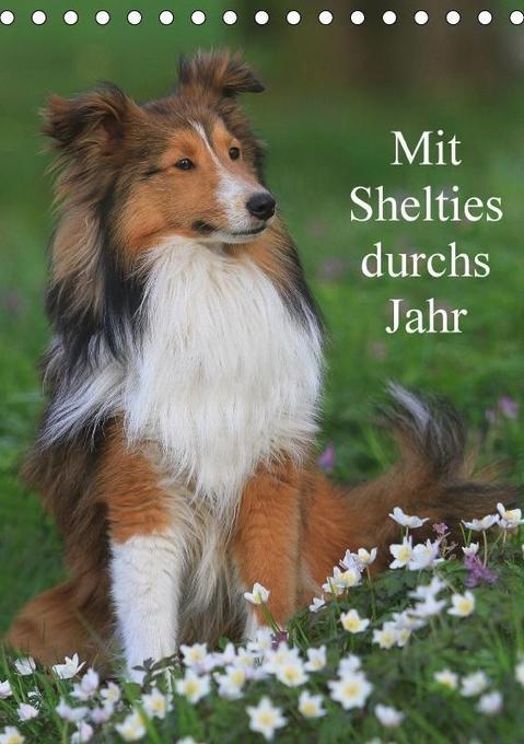 Mit Shelties durchs Jahr (Tischkalender 2017 DI...