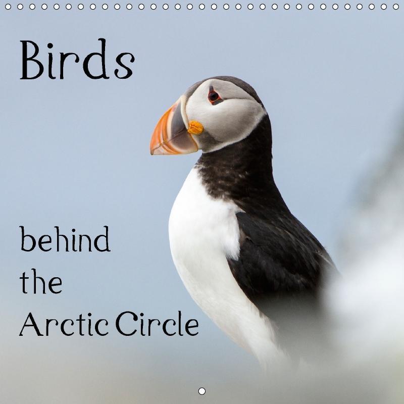 Birds behind the Arctic Circle (Wall Calendar 2...