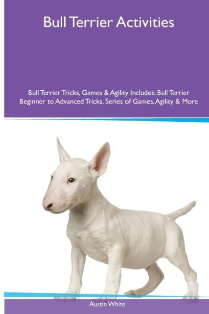 Bull Terrier Activities Bull Terrier Tricks, Ga...