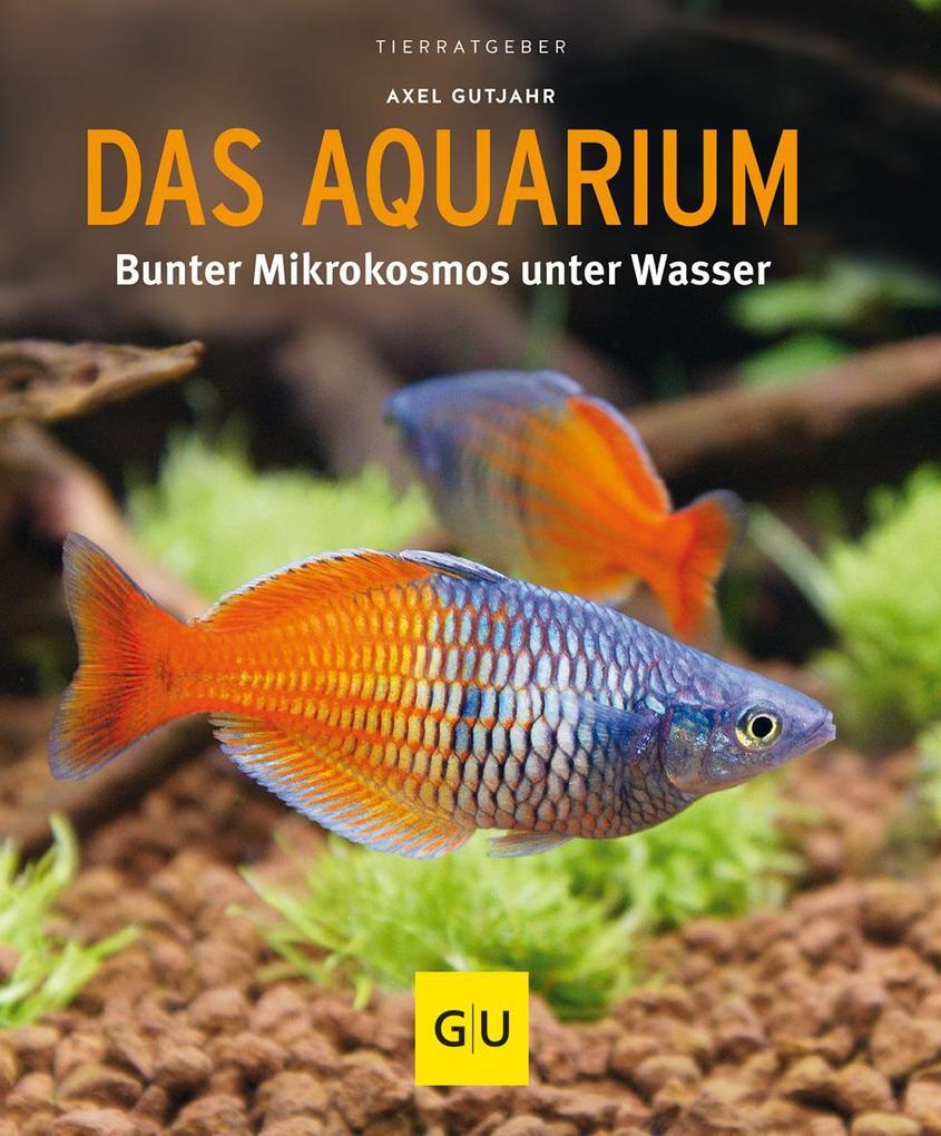 Das Aquarium als Buch von Axel Gutjahr