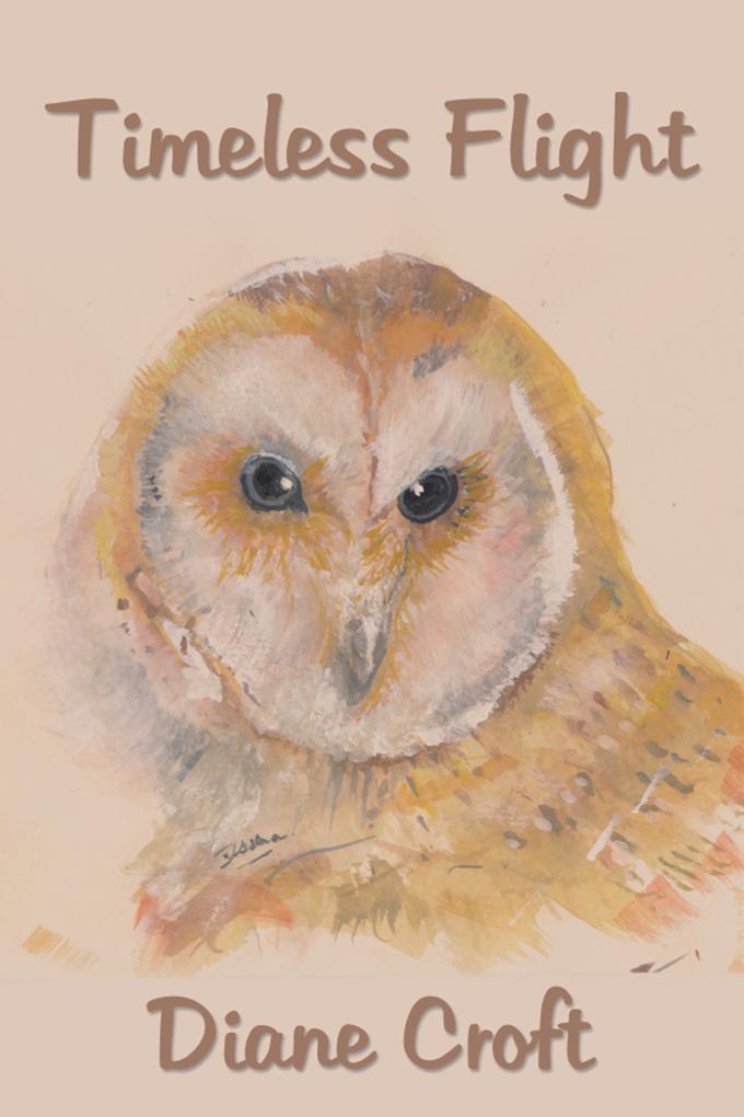 Timeless Flight als eBook Download von Diane Croft