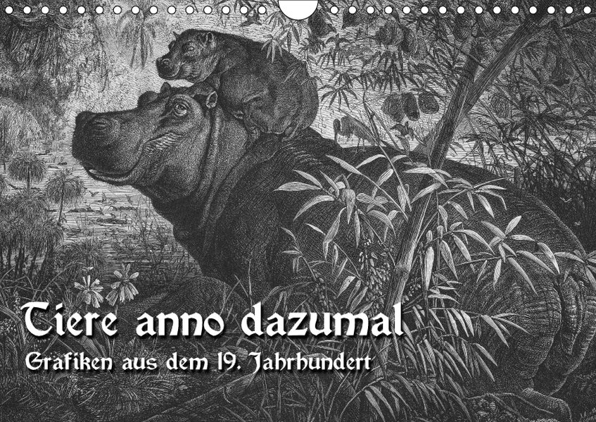 Tiere anno dazumal (Wandkalender 2018 DIN A4 quer)