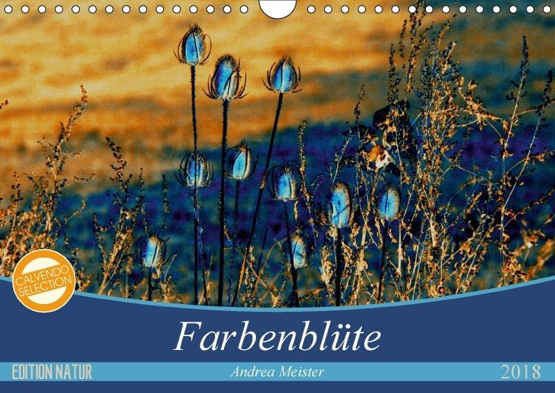 Farbenblüte (Wandkalender 2018 DIN A4 quer)