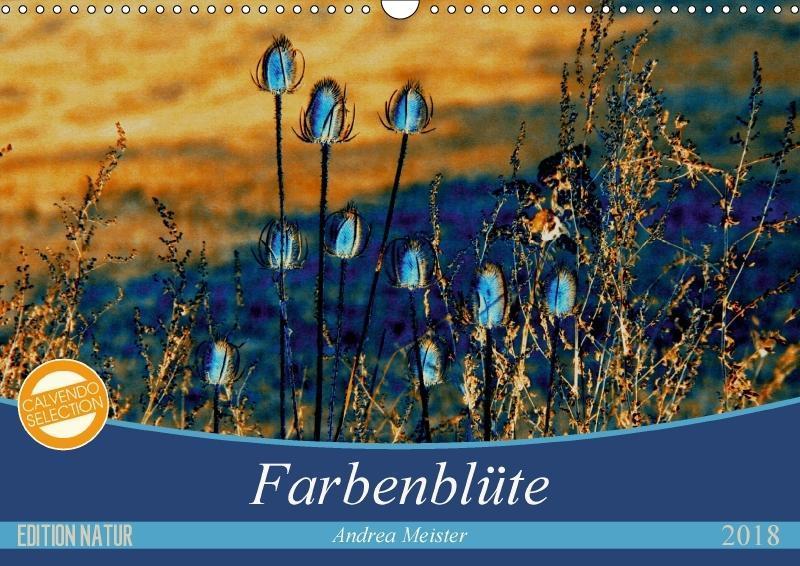 Farbenblüte (Wandkalender 2018 DIN A3 quer)