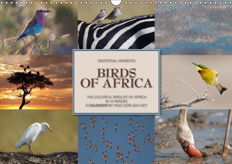 Emotional Moments: Birds of Africa UK-Version (...