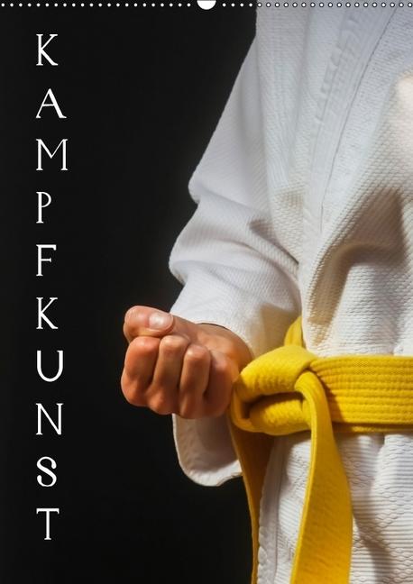 Kampfkunst (Wandkalender 2018 DIN A2 hoch)
