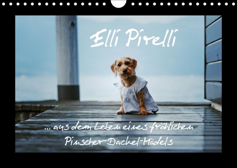 Elli Pirelli... aus dem Leben eines fröhlichen ...