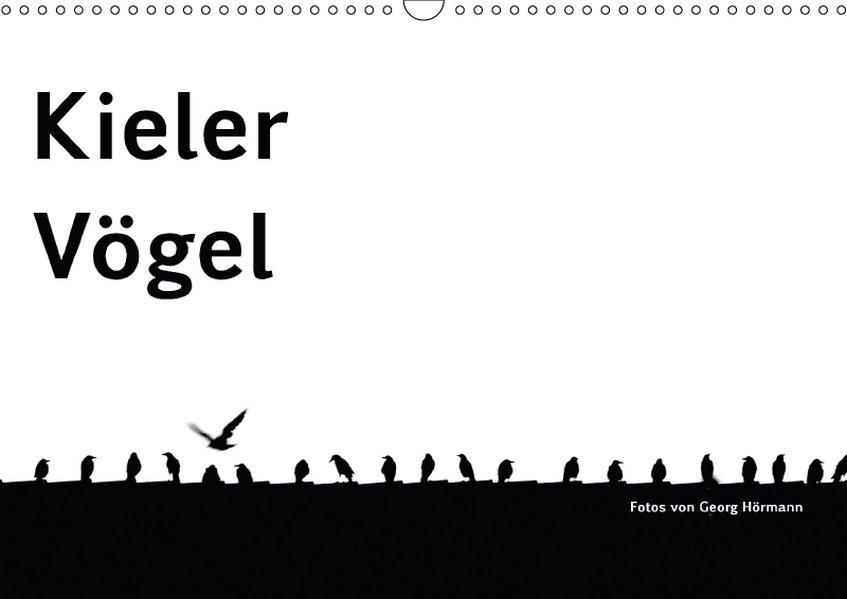 Kieler Vögel (Wandkalender 2018 DIN A3 quer)