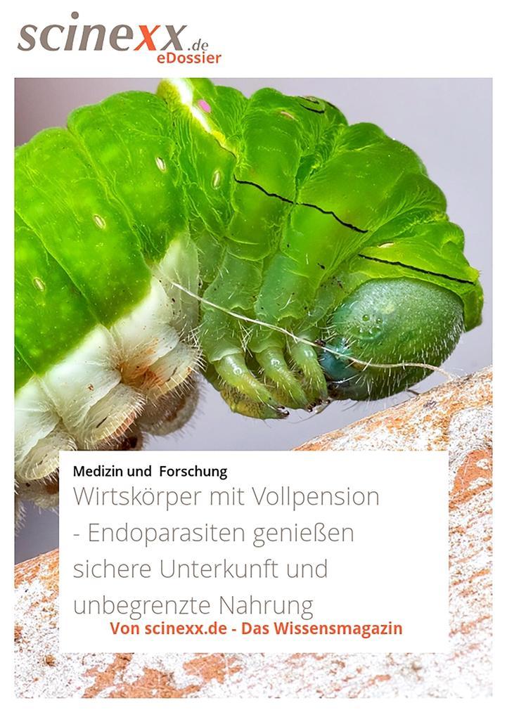 Vorschaubild von Wirtskörper mit Vollpension als eBook Download von Ansgar Kretschmer