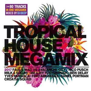 Tropical House Megamix 2017