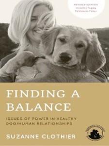 Finding a Balance als eBook Download von Suzann...