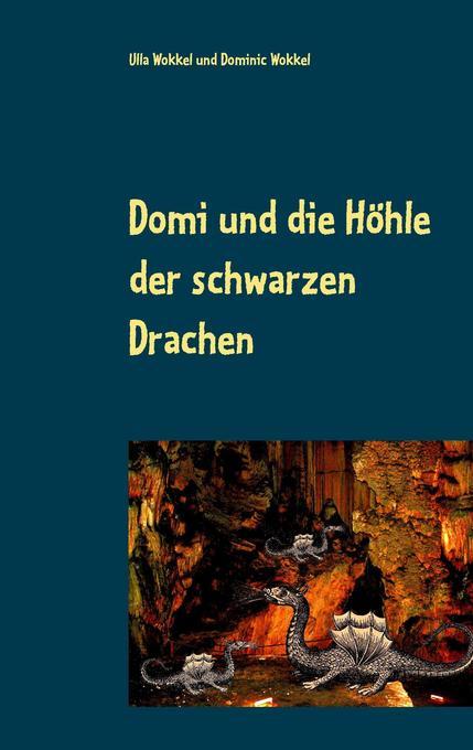 Domi und die Höhle der schwarzen Drachen als Bu...