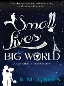 Small Lives, Big World als eBook Download von R...