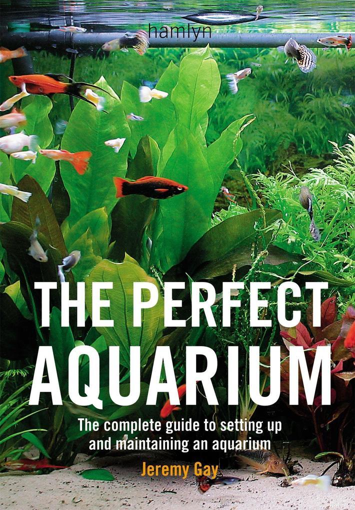 Perfect Aquarium als Buch von Jeremy Gay