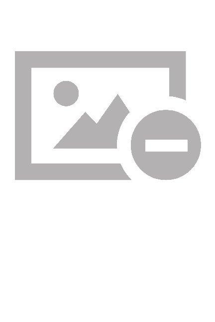 Grundlinien der Psychologie als Buch von Stepha...