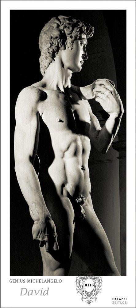 Genius Michelangelo: David. Panorama Zeitlos