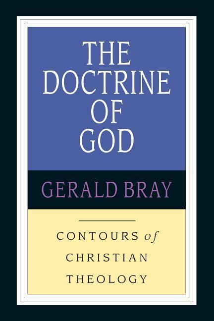 The Doctrine of God: God & the World in a Transitional Age als Taschenbuch