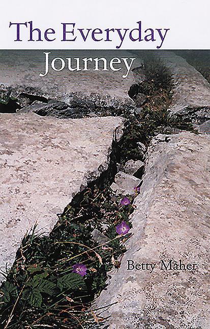 Everyday Journey als Taschenbuch