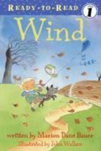 Wind als Taschenbuch