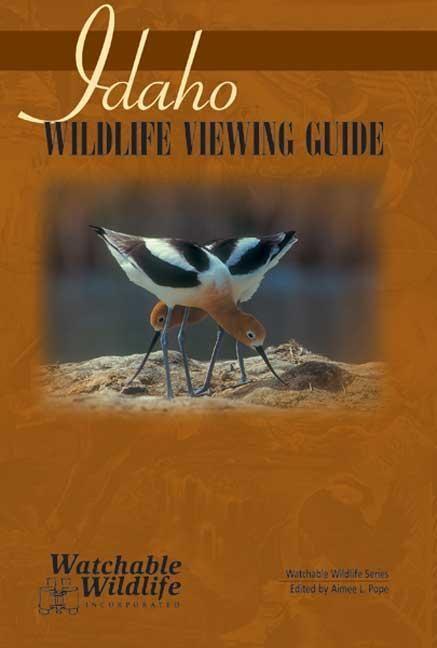 Idaho Wildlife Viewing Guide als Taschenbuch