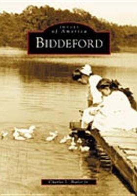 Biddeford als Taschenbuch