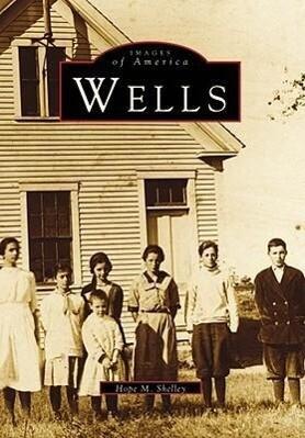 Wells als Taschenbuch