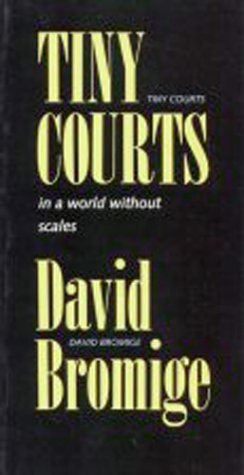 Tiny Courts in a World Without Scales als Taschenbuch