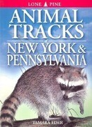 Animal Tracks of New York & Pennsylvania