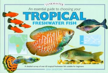 An Essential Guide to Choosing Your Tropical Freshwater Fish als Buch