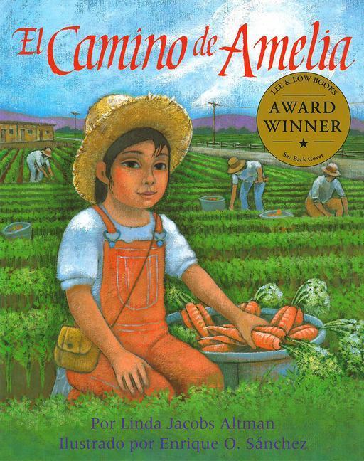 El Camino de Amelia als Taschenbuch