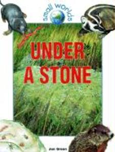 Under a Stone als Taschenbuch
