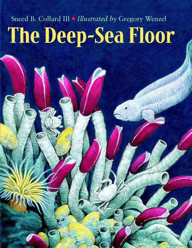 The Deep-Sea Floor als Taschenbuch